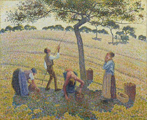 カミーユ・ピサロ りんごの収穫
